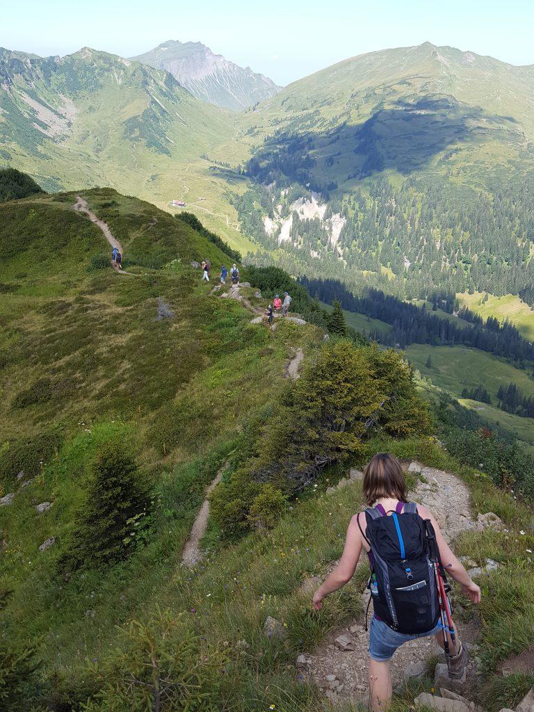 Der Weg mit Höhen und Tiefen